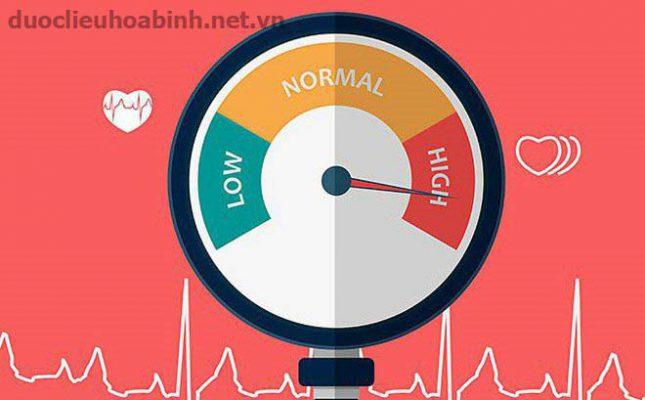 Mua dây thìa canh ở Quảng Trị giảm huyết áp