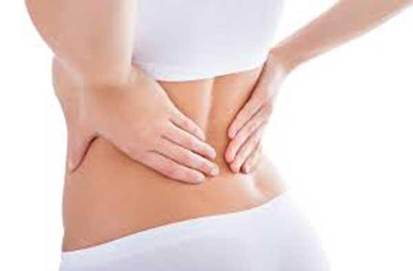 Tác dụng hỗ trợ điều trị đau mỏi lưng của cây mú từn