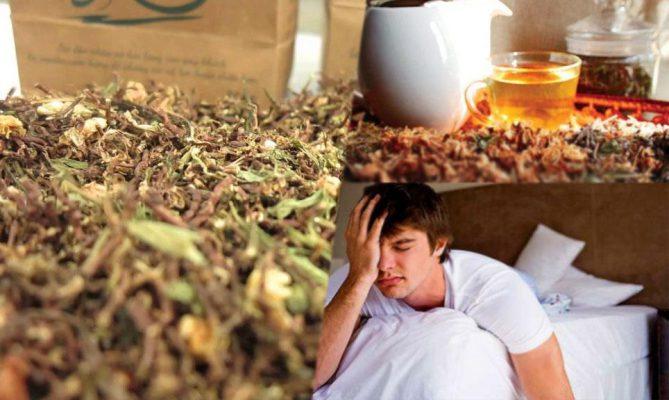 Thanh niên mất ngủ uống trà sơn mật hồng sâm có tốt không
