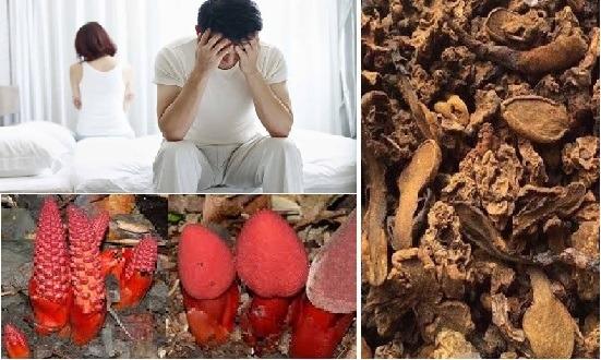 Nấm ngọc cẩu hỗ trợ điều trị rối loạn cương dương
