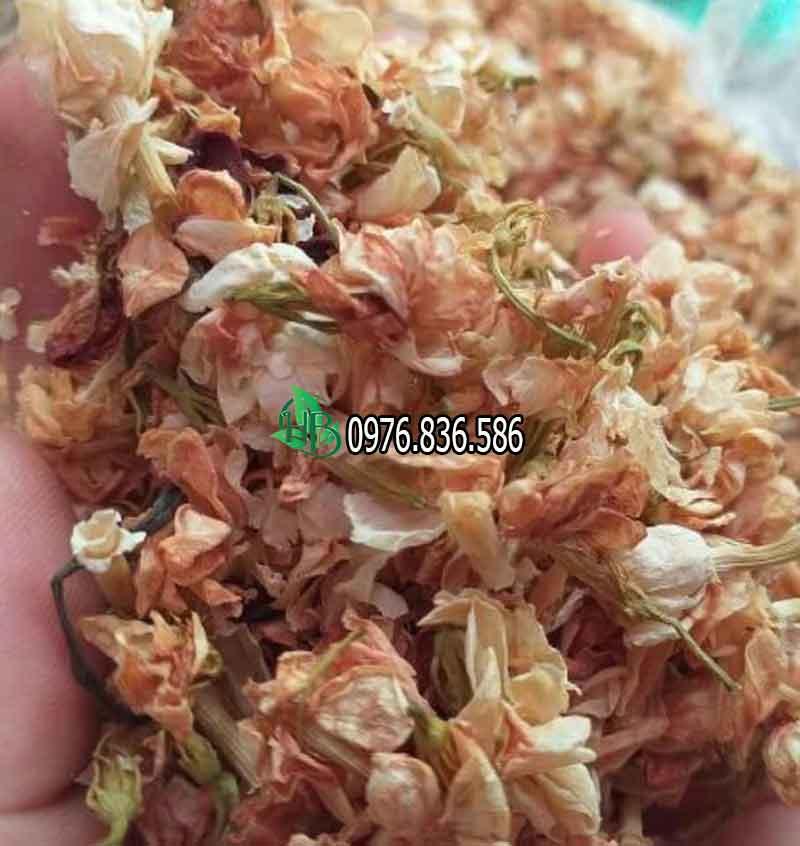 Tác dụng hoa trà nhài