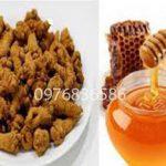 Uống tam thất ngâm mật ong có bị tăng cân không?
