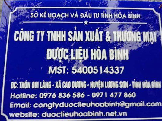 Mua bồ công anh ở đâu TP Hồ Chí Minh