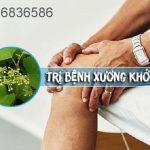 Cây chìa vôi hỗ trợ điều trị đau xương khớp