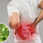 Bài thuốc hỗ trợ trị viêm cầu thận từ cây cỏ xước