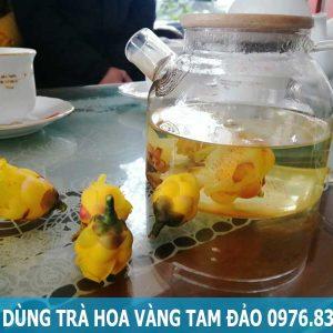 Cách dùng trà hoa vàng Tam Đảo