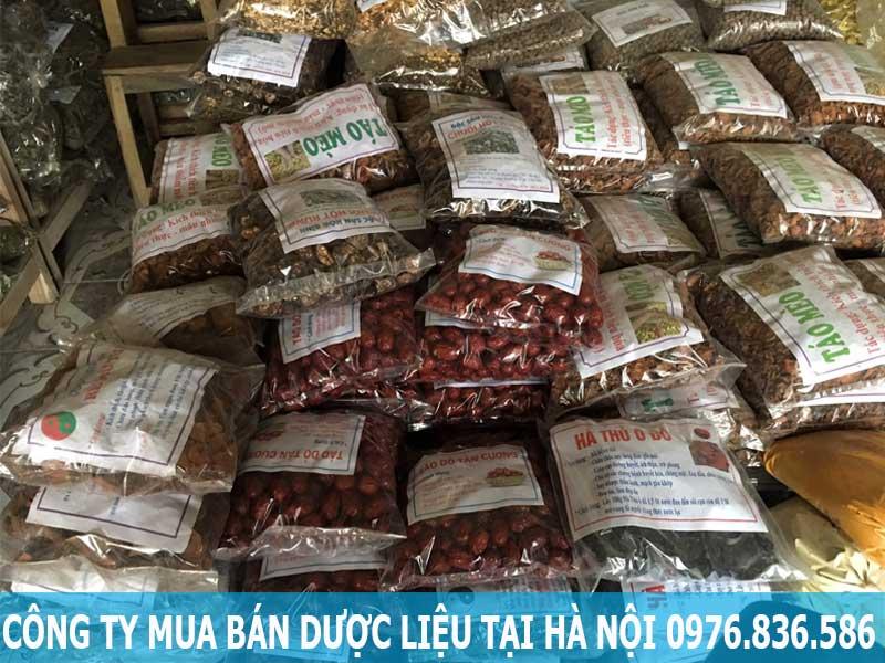 Công ty mua bán dược liệu tại Hà Nội