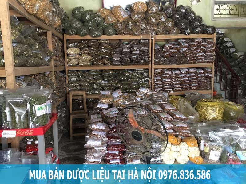 Mua bán dược liệu chất lượng tại Hà Nội