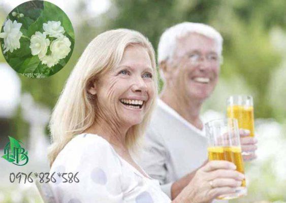 Trà hoa nhài giúp ngừa bệnh alzheimer