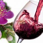 Sử dụng rượu sim có tác dụng gì?
