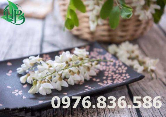 Hoa hòe pha trà là cách dùng đơn giản và hiệu quả