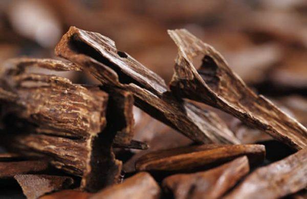 Công dụng của Trầm Hương trong Tây Y