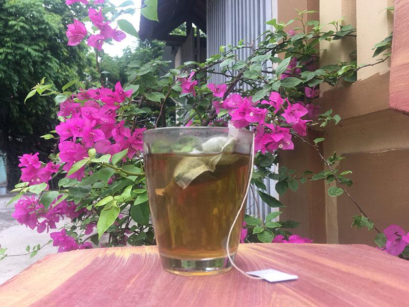 Lợi ích uống trà xạ đen hàng ngày