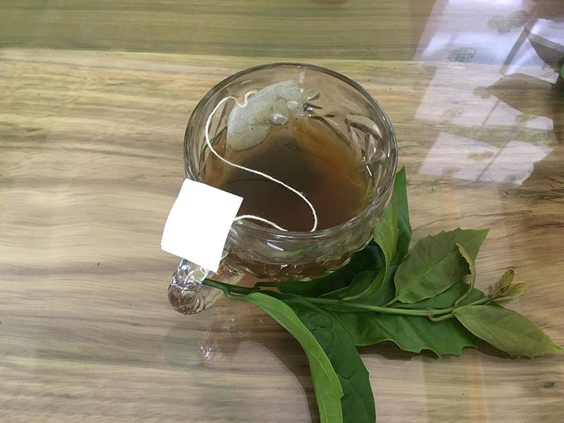 Tuyển đại lý cộng tác viên trà xạ đen túi lọc