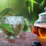 Uống trà xạ đen túi lọc vào buổi sáng được không?