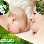 Ích mẫu kết hợp chè vằng tốt cho mẹ sau sinh